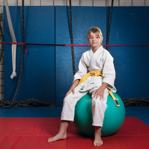 Judoschule Nippon. Vergrösserte Ansicht